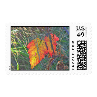 Two Leaves Overlapped Stamps