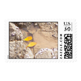 Two Leaves Postage