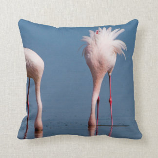 Two Lesser Flamingos (Phoenicopterus Minor) Feed Throw Pillow