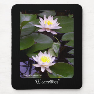 Two Light Water lilies Mouse Pad