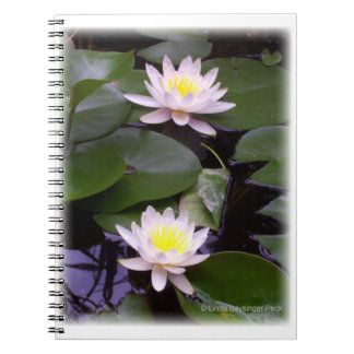 Two Light Water lilies Notebook
