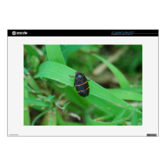 Two Lined Spittle Bug Decal For Laptop
