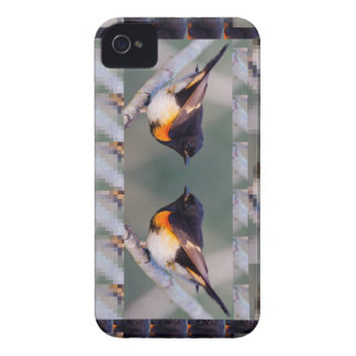 Two little American cute Birds - Kids Fancy Shirts iPhone 4 Cases