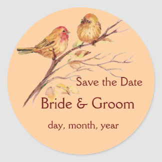 Two Little Bird Sparrows Peach Brown Rustic Nature Classic Round Sticker