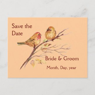 Two Little Birds Custom Save the Date Wedding postcard
