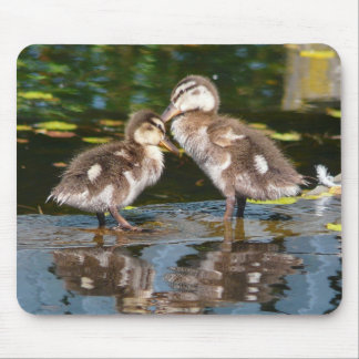 Two Little Duckies Mouse Pad