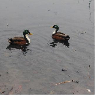 Two little Ducks Cutout