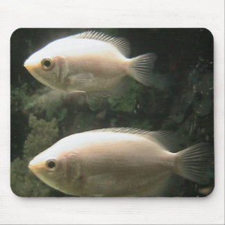 Two Little Fish Mouse Pad