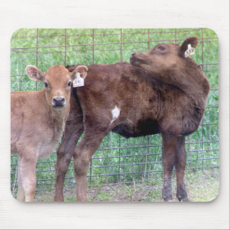 Two Little Heifers Mouse Pad