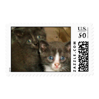 TWO LITTLE KITTENS stamp