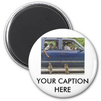 TWO LITTLE RACCONS 2 INCH ROUND MAGNET