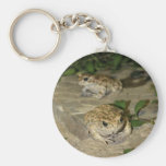 Two little toads - green frog print keychain