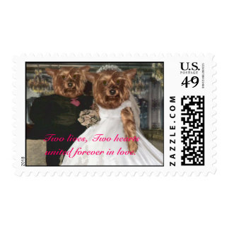 Two lives, Two hearts united forever in love Postage