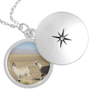 Two Llamas - 2 Bolivia Llama Locket Necklace