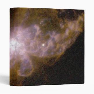 Two-Lobed Planetary Nebula Hubble 5 Vinyl Binders