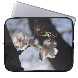 Two lonely cherry blossoms and sunlight laptop sleeve