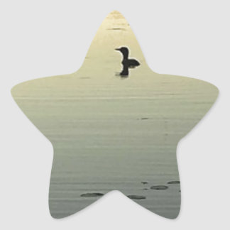Two loons star sticker