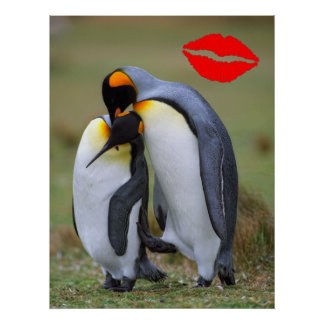 Two love penguins poster
