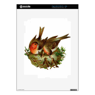 Two lovely adult Robins along with their Babies Decals For iPad 2