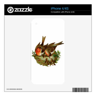 Two lovely adult Robins along with their Babies Decals For iPhone 4