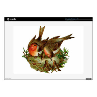 Two lovely adult Robins along with their Babies Decals For Laptops