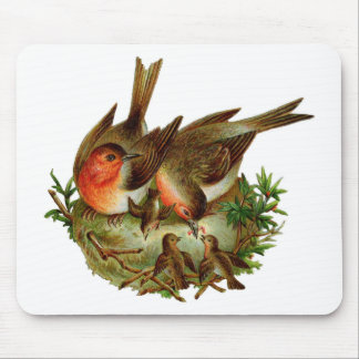 Two lovely adult Robins along with their Babies Mouse Pad