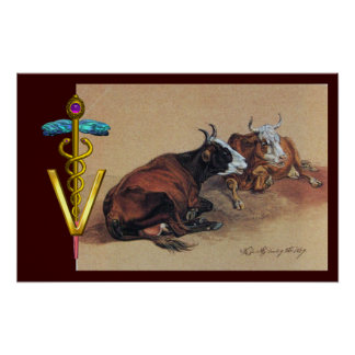 TWO LYING COWS GOLD CADUCEUS VETERINARY SYMBOL POSTER