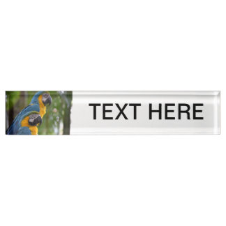 two macaw front focused c bird.jpg desk name plate