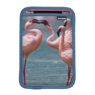 Two Male Lesser Flamingos (Phoenicopterus Minor) Sleeve For iPad Mini