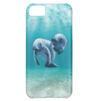 Two Manatees Swimming iPhone 5C Cover