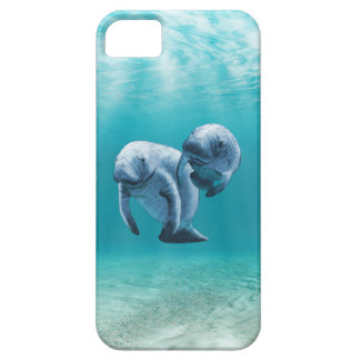 Two Manatees Swimming iPhone SE/5/5s Case