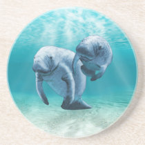Two Manatees Swimming Sandstone Coaster