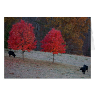 two maples three cows stationery note card