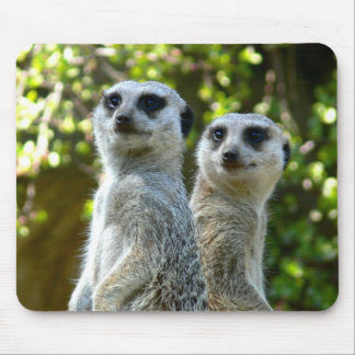 Two Meerkats Mouse Pad
