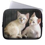 Two Mekong Bobtail Tabby Point Kittens Laptop Computer Sleeve