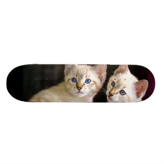 Two Mekong Bobtail Tabby Point Kittens Skateboard Deck
