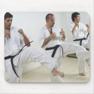 Two mid adult men with a young man practicing mouse pad