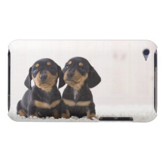 Two Mini Dachshund Sitting iPod Touch Case-Mate Case
