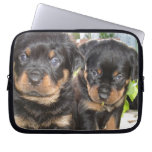 Two Mischievious Rottweiler Puppies Computer Sleeves