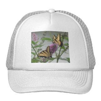 Two Monarchs & Flower Hat