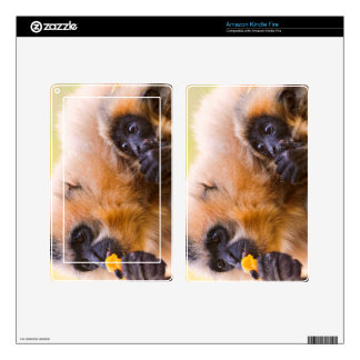 TWO MONKEYS DECAL FOR KINDLE FIRE
