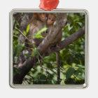 Two Monkeys In A Tree Metal Ornament