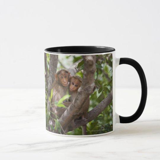 Two Monkeys In A Tree Mug