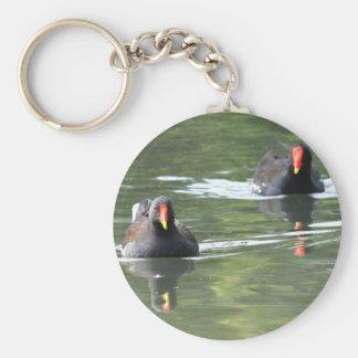 Two Moorhens Keychain