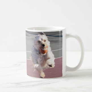 Two Morkies running in the tennis courts Coffee Mug