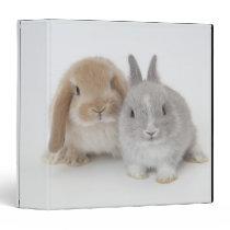 Two Netherland Dwarf and Holland Lop Bunnies Binder