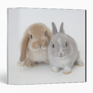 Two Netherland Dwarf and Holland Lop bunnies Binder