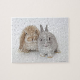 Two Netherland Dwarf and Holland Lop bunnies Jigsaw Puzzle