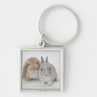Two Netherland Dwarf and Holland Lop bunnies Keychain