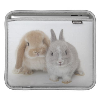 Two Netherland Dwarf and Holland Lop bunnies Sleeve For iPads